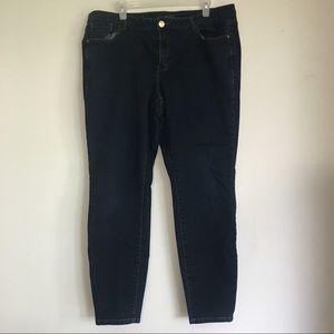 Lane Bryant Dark Wash Plus Size Skinny Jeans